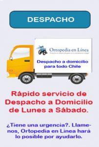 camiondespacho2